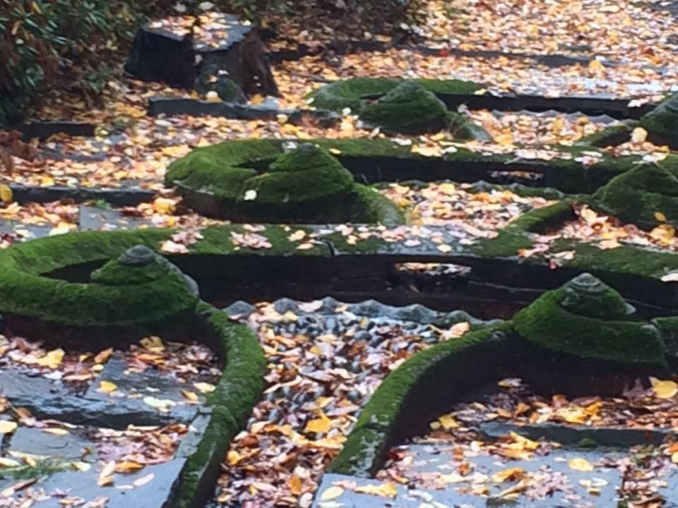 Moss covered spirals